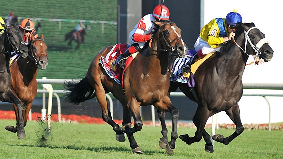 The Apache in the Arlington Million, losing the race by an objection. Image: ESPN.com