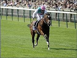 Frankel coming home alone yesterday. Image: sportinglife.com