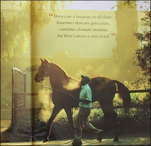 Summerhill Sires Brochure 2012/2013