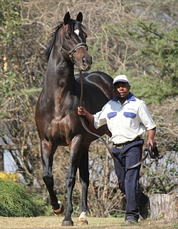 Jackodore Grabs Nkosazana Listed By Four Lengths