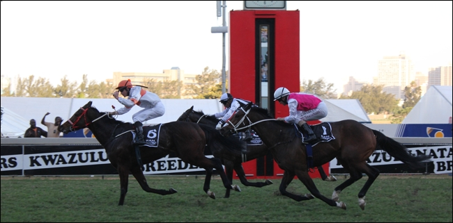 Exciting New Developments For KZN Breeders Race Day 2013