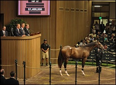 A.P. Indy Colt Tops First Session At Keeneland September Sale
