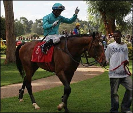 Lazrin, by Bezrin, returning to the winners enclosure after winning the Gr 1 Kenya Derby in 2011.
