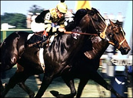 Seattle Slew winning the Preakness