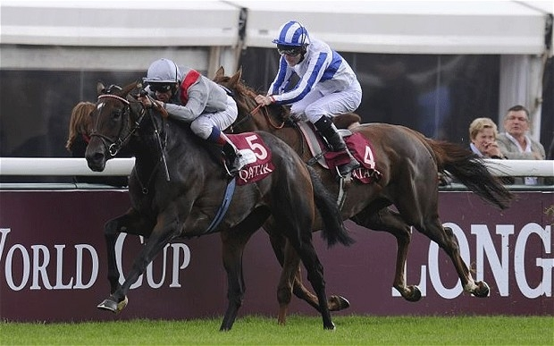 Treve. Image: telegraph.co.uk