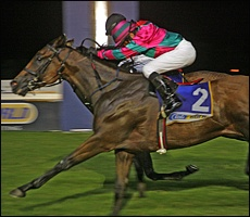 Clear As Day Light trained by Des Egdes, out of Clear Creek, winning his fourth race 10 January 2012. Image: Gold Circle