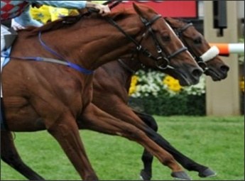 Dunaden Makes History In The Melbourne Cup