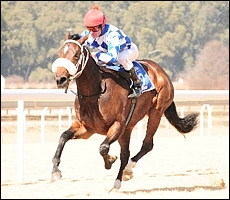 Extra Zing, storming to a five length victory on debut at the Vaal. Images: JC Photos