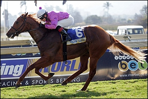 Gitiano, second winner for Mullin's Bay. Image: Gold Circle