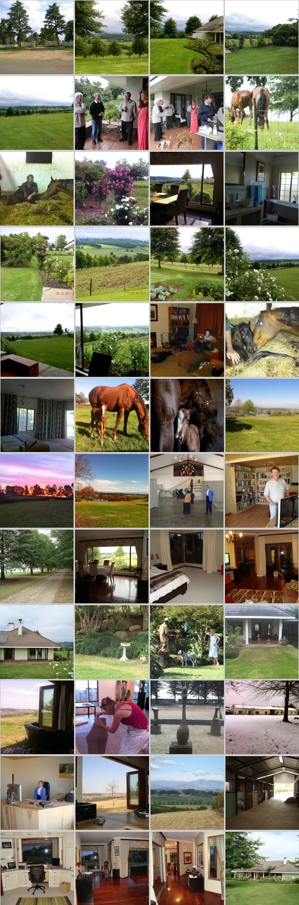 Graceland Farm In Pictures