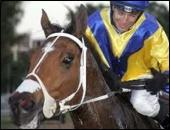 Naming A Racehorse