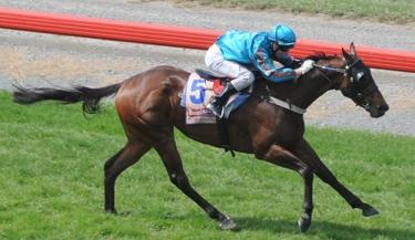 Gr3 winner King Montrose