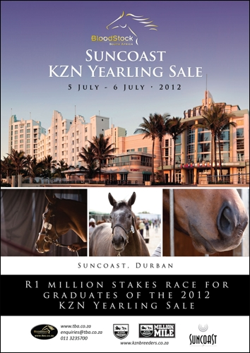 KZN-Bred Stakes Winning Siblings At 2012 Suncoast KZN Yearling Sale