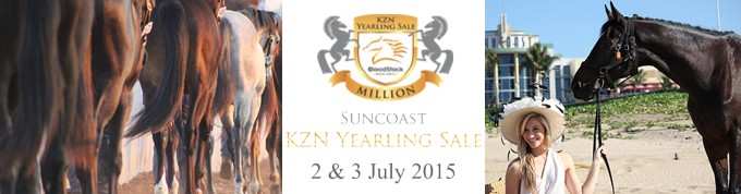 Suncoast KZN Yearling Sale Catalogue Launched Online