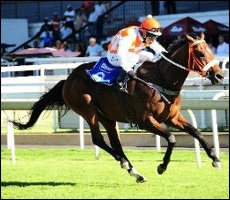 Legal Action, winning the Var Gold Rush Sprint for Midlands Thoroughbreds