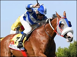 KZN-Breds Top Of The List In First Entries For J & B Met