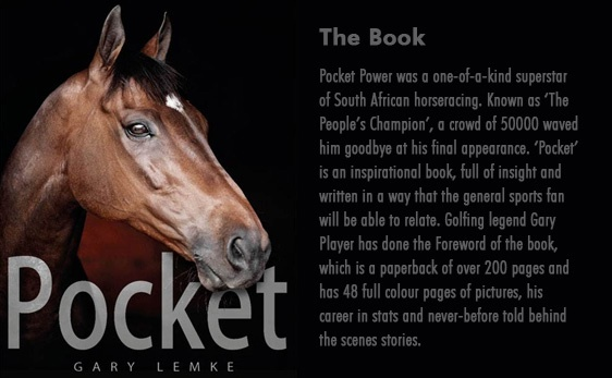 Pocket - The Book