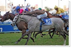 Pocket Power and Dancers Daughter dead-heat in 2008. Image credit: Gold Circle