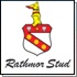 Rathmor Stud's Suncoast KZN Yearling Sale Entrants