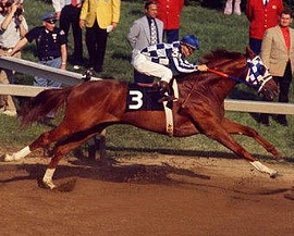 Secretariat showing his massive length of stride in the Preakness - 1 of the legs of his Triple Crown win