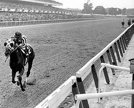 Secretariat - his Belmont Stakes 31 length annihilation of the field and part of his Triple Crown win