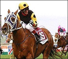 Strategic News(AUS) storming to victory by three lengths in the Gr 1 Steinhoff Summer Cup. Image: sportingpost.co.za.