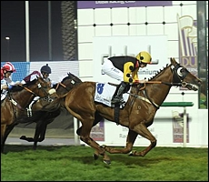 Strategic News(AUS) winning the Dubal Casthouse over 1600m in Dubai. Image: Andrew Watkins/Dubai Racing Club