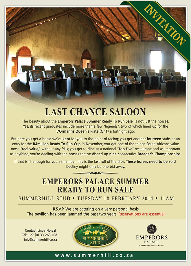 Summerhill Stud: Emperors Palace Summer Ready To Run Sale 2014