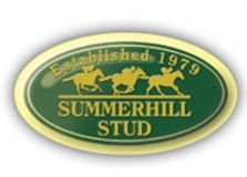 Summerhill Stud, Champion Breeders for eight consecutive years. Image: Summerhill Stud