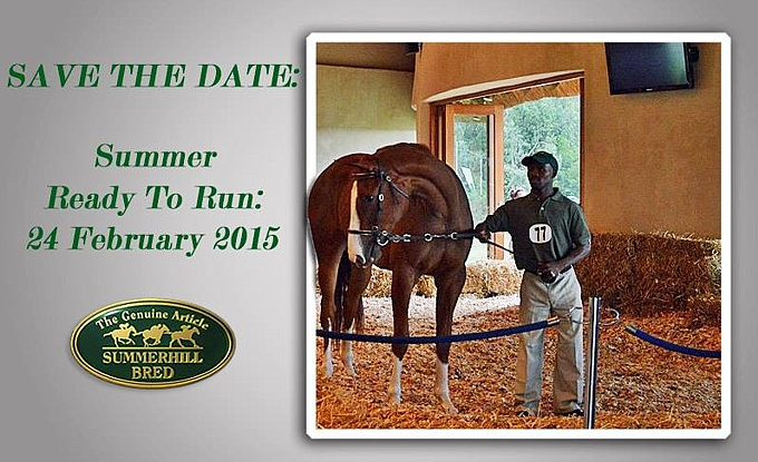 Summerhill's Summer Ready To Run Sale: Save The Date