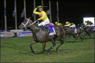 Tales Of Bravery will be the star attraction at the sale. Image: Gold Circle