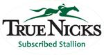 Invitation: Rathmor Stud Introducing Noble Tune(USA)
