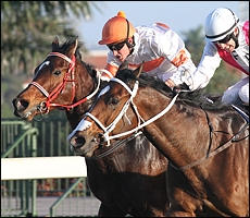 Knock On Wood storming to victory from Black Wing and The Mouseketeer. Image: John Lewis