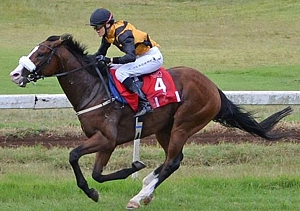 Black-Type Weekend For KZN-Breds: A.P. Arrow Off To Cracking Start